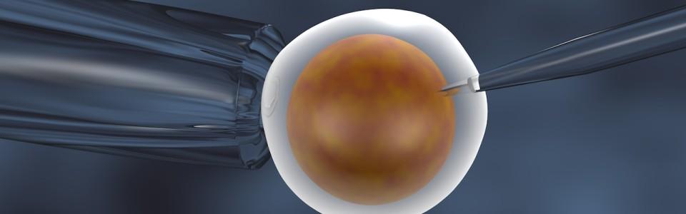 Először születtek teljes genetikai teszten átesett, egészséges lombikbébik